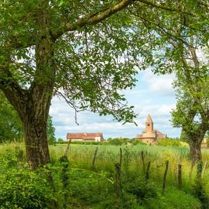 Escapade en Bourgogne - Dijon, Beaune