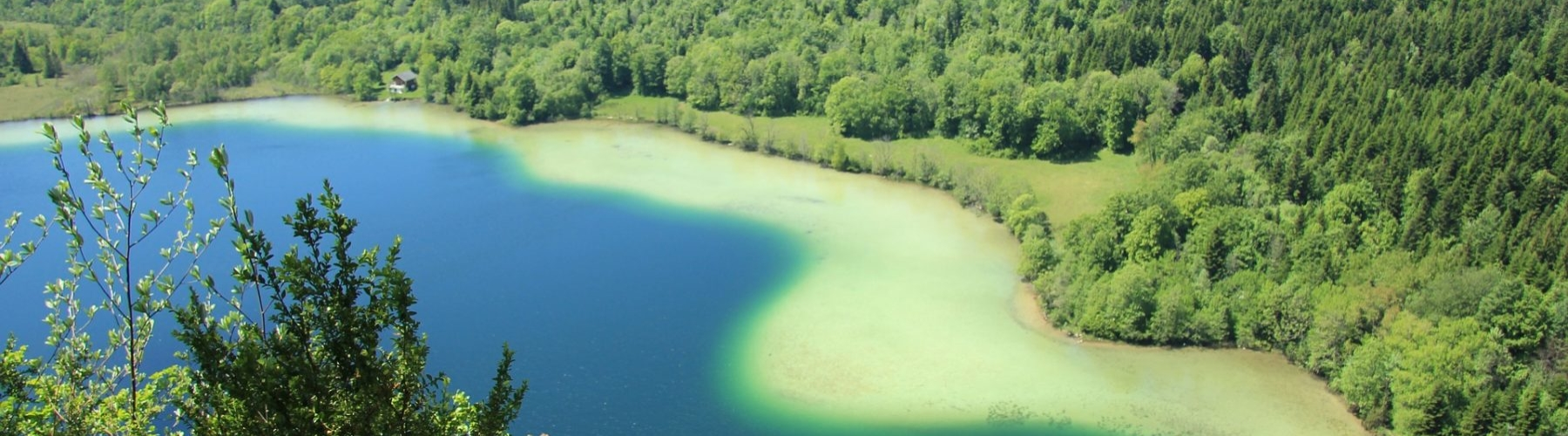 Lac Léman - Jura