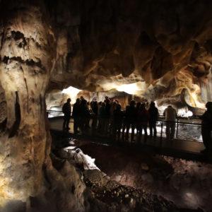 Séjour UNESCO : De Lyon à Avignon