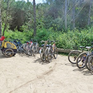 Seminar in Porquerolles Island – Nautical trip and mountain bike tour